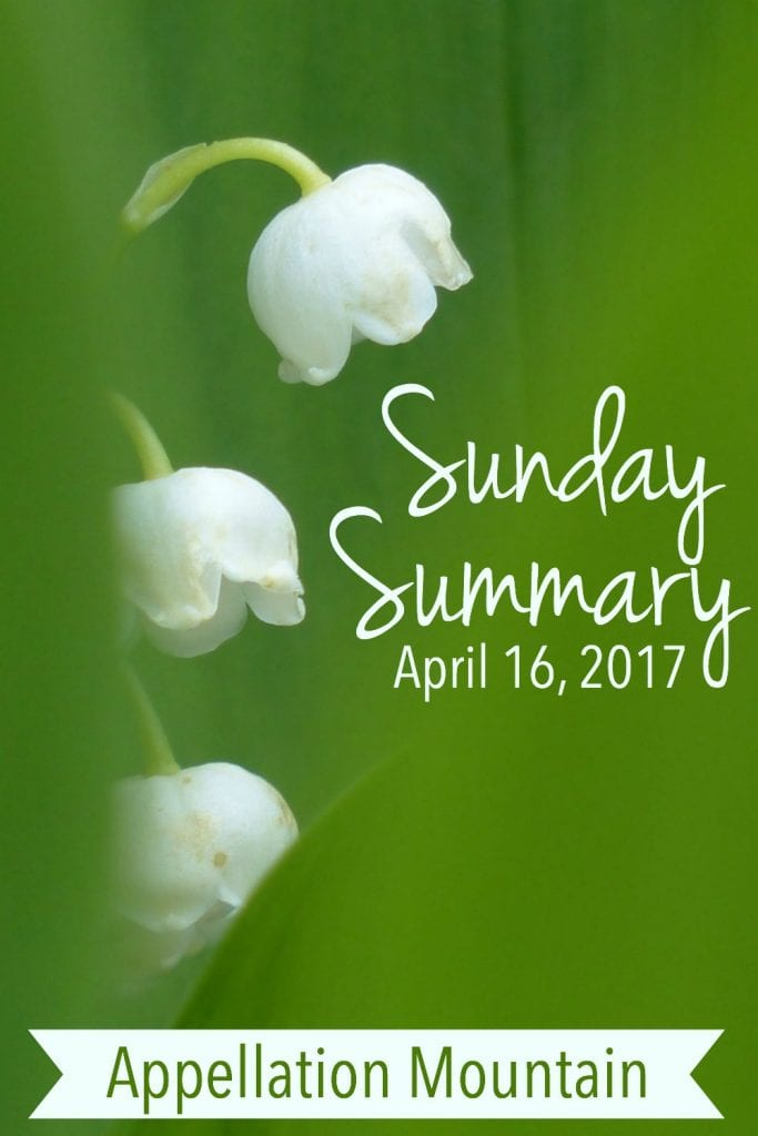Sunday Summary 4.16.17