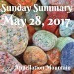 Sunday Summary: 22/2017