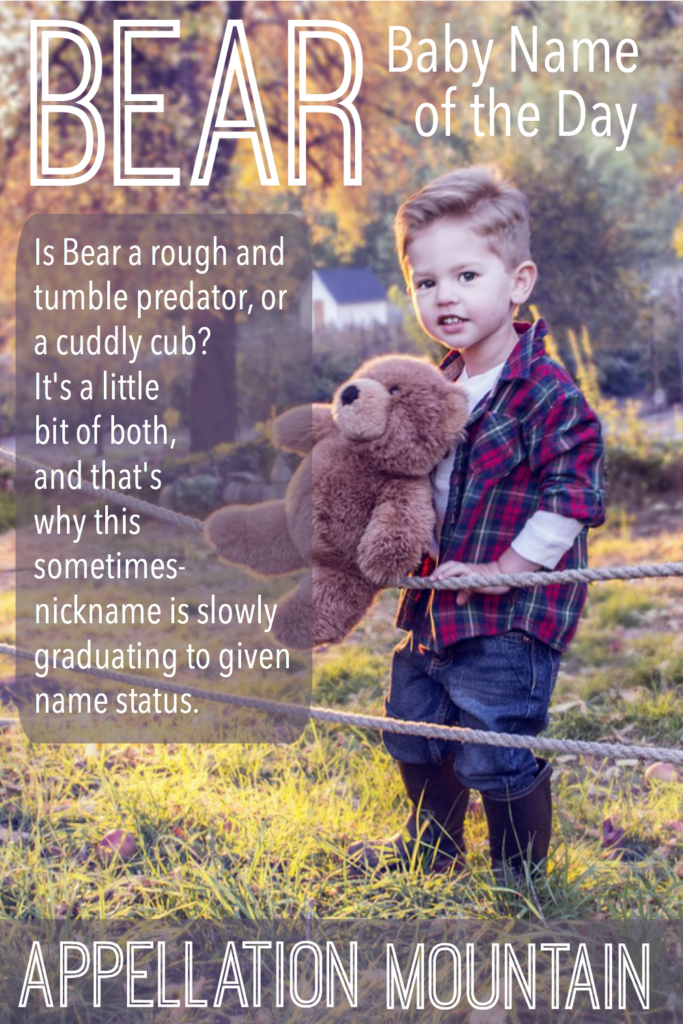 Bear: Baby Name of the Day