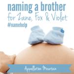 Name Help: Zane, Fox, Violet, and …