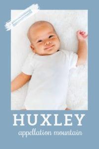baby name Huxley