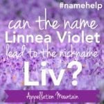 Name Help: Linnea Violet Called Liv?