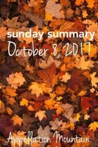 Sunday Summary 10.8.17