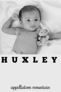 boy name Huxley