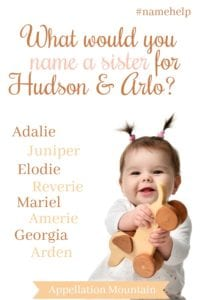 Name Help: A Sister for Hudson and Arlo