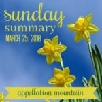 Sunday Summary: March Madness Finals, Send Your Name to the Sun, and Dinah!