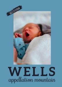 baby name Wells