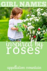 rose names for girls