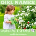 Rose Names: Rosalie, Rosemary, Primrose