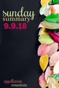 Sunday Summary: 9.9.18