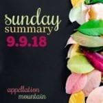 Sunday Summary: Minnow, Layton, Coco, and Cal