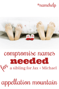 Name Help: A Sibling for Jax and Michael