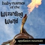Wizarding World Baby Names: Find Your Harry Potter Name!