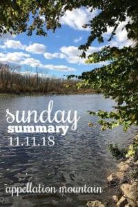 Sunday Summary 11.11.18