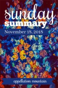 Sunday Summary: 11.18.18