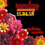 Sunday Summary: 11.25.18