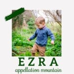 Baby Name Ezra: Rooted and Modern