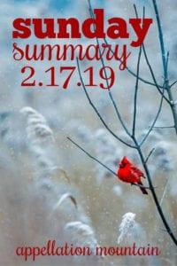 Sunday Summary: 2.17.19