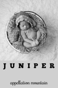 girl name Juniper