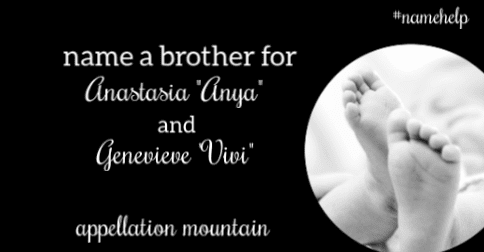 Name Help: A Brother for Anya and Vivi - Appellation Mountain