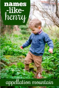 boy names like Henry