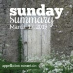 Sunday Summary: 3.17.19