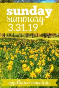 Sunday Summary: 3.31.19