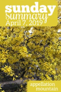 Sunday Summary: 4.7.19