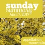 Sunday Summary: 4.7.19