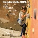 Trendwatch 2019 Girls Predictions
