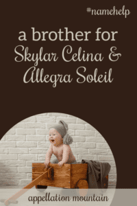 Name Help: A Brother for Skylar & Allegra