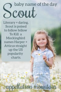 baby name Scout