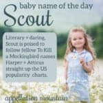 Scout: Baby Name of the Day