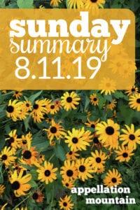Sunday Summary: 8.11.19