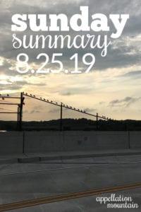 Sunday Summary: 8.25.19