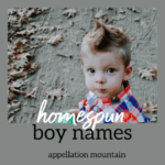 Homespun Boy Names: Emmett, Arlo, and More