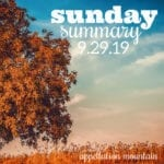 Sunday Summary: 9.29.19