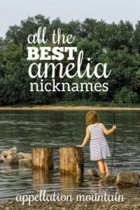 Amelia nicknames