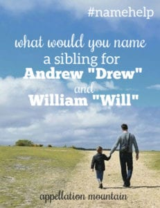 Name Help: Sibling for Drew and Will