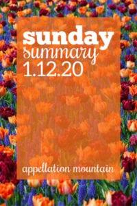 Sunday Summary: 1.12.20