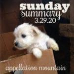 Sunday Summary: 3.29.20