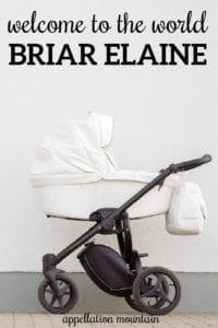 Briar Elaine