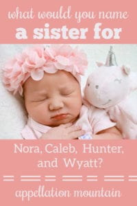 Name Help: A Sister for Nora