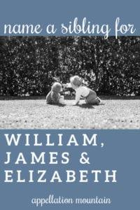 Name Help: Brother for William, James, Elizabeth
