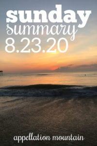 Sunday Summary 8.23.20