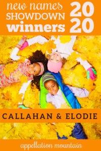 NNS20: The Winners