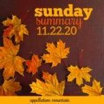 Sunday Summary: 11.22.20