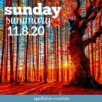 Sunday Summary: 11.8.20