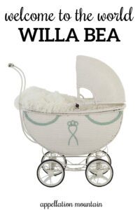 Welcome Willa Bea