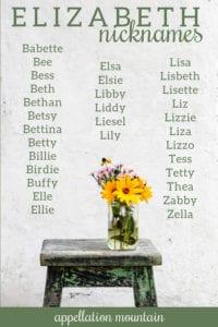 unusual nicknames for Elizabeth